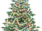 Lire la suite de Arbre de Noël municipal