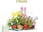 Lire la suite de Marché aux fleurs