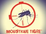 Lire la suite de Le moustique tigre
